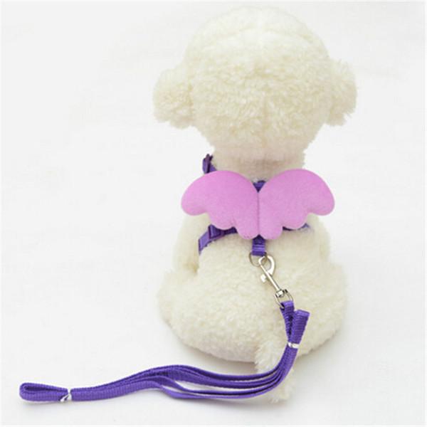 Cute Angel Pet Dog Leads und Halsbänder Set Nylon Pupply Pudel Welpe Lovely Wing Design Harness Weste Seil Leine Drop Shipping