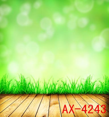 Photography Backdrops Custom Portrait cloth Digital Printed Photo Props Photo Studio Background AX-4243