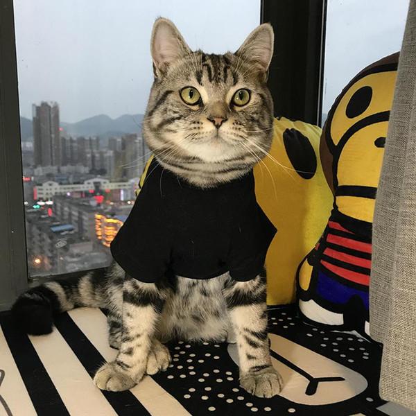 Di lusso popolare del cane bello con cappuccio Marchio marea Cute Teddy Puppy Schnauzer Abbigliamento autunno inverno caldo Outwears Little Bee Maglione Abbigliamento