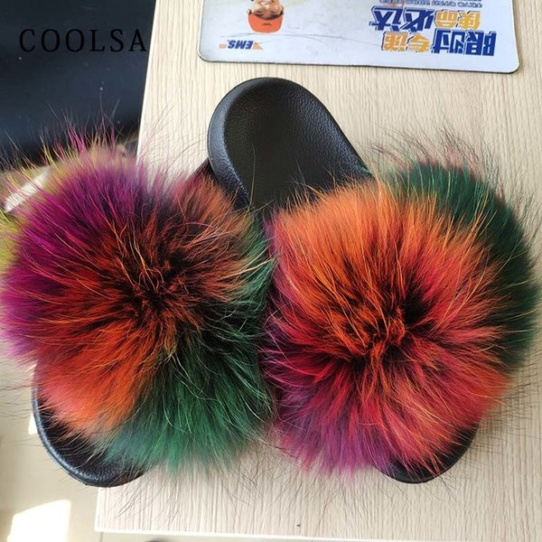 Raccoon multicolor