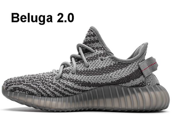 Beluga 2.0.