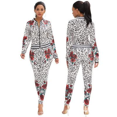 New Arrival Women Sportswear Tracksuits Long Sleeve Cardigan and Pants Two Piece Sets Outfits Sweatshirts Sport Suits P328