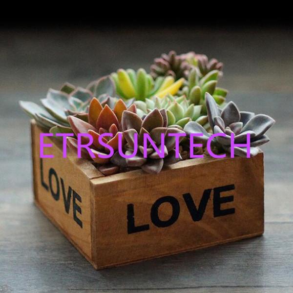 50pcs Retro Flower Pots Succulent Plant Box Square Mini Jewelry Storage Boxes LOVE Letter Wooden Garden Pot