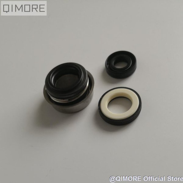 Water Pump water seal & oil seal set for 250cc cooling Scooter Moped ATV QUAD CFMOTO CF250 ELITE CH250 KS4 172MM
