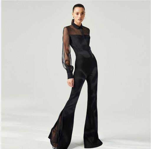 Evening dress Yousef aljasmi Labourjoisie Zuhair murad1 Sheath Long Sleeve High Collar Tulle Illusion Black Long Dress James_paul