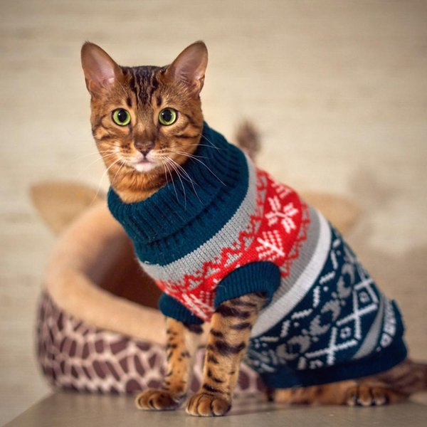 Cat Christmas.Petalk Snowflower Cat Sweater Knitwear Pet Jumper Coat Dogs Cat Christmas Dog Clothes For Small Pet Xs S M L Xl Xxl Cat Costumes Adult Cat Costumes