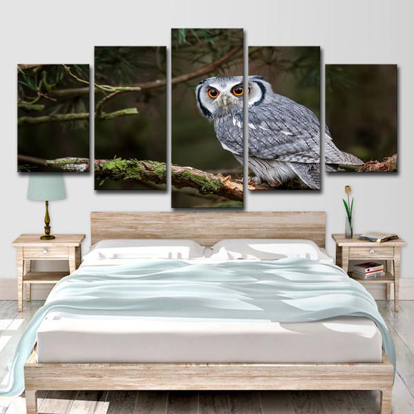 5 Peça HD Impresso Animais Coruja Pintura na Sala de Lona Decoração Imprimir Imagem do Cartaz Da Lona Frete Grátis