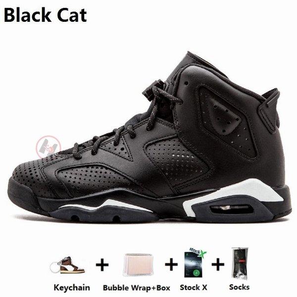 16 Black Cat