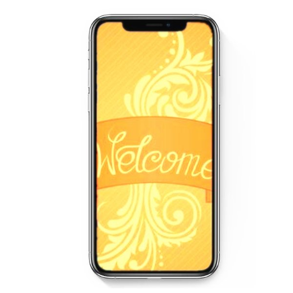Sealed box Goophone XS MAX Phone 6.5inch Face ID Show 4G unlocked Dual sim Quad Core MT6580