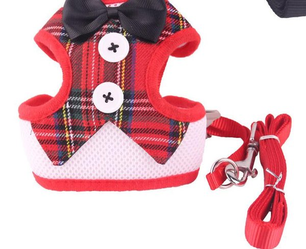 Pet leash dog chest strap vest-style evening dress butterfly bow tie chest back dress fashion comfortable does Chrome-plated protective hook
