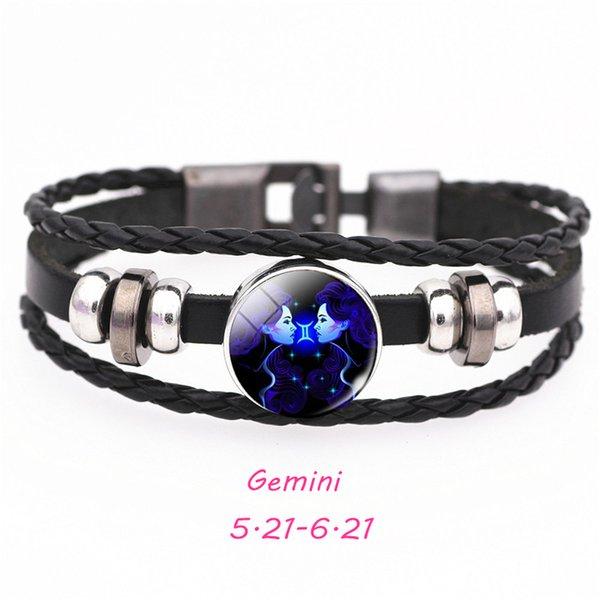 SCSL201-Gemini 21cm