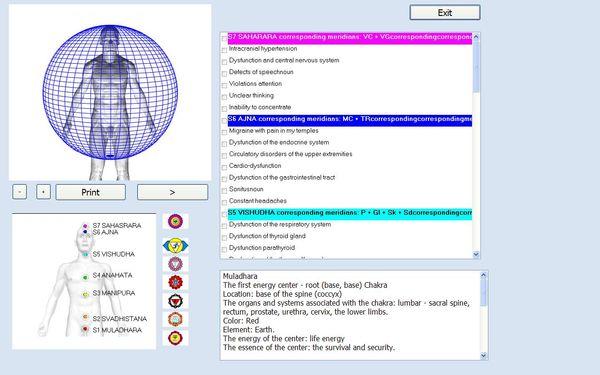 2019 New 12D CELL NLS Health Analyzer AURA CHAKRA Health Scanner Body Analyzer Device NLS Analysis Bio AE analyzer DHL Free Shipping