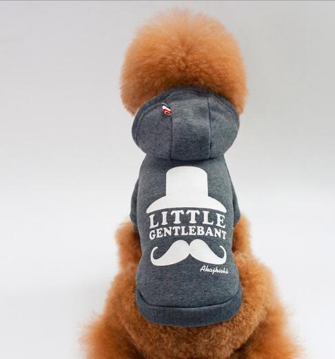 New Dog Sanitary Clothes, Pet Clothes, Teddy Dog Clothes, Pet Supplies for Spring and Autumn Period