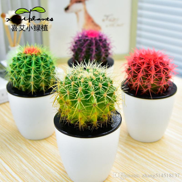 30pcs seed cactus Succulents in the office bedroom beautiful potted plants absorb formaldehyde, anti radiation purification air quality seed