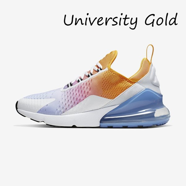 Universidade Ouro