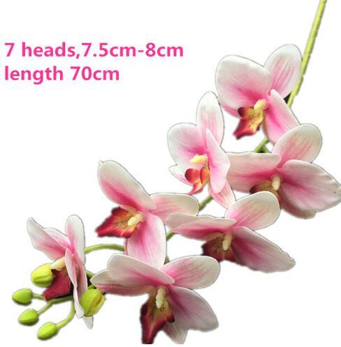 70cm 가벼운 분홍색 난초