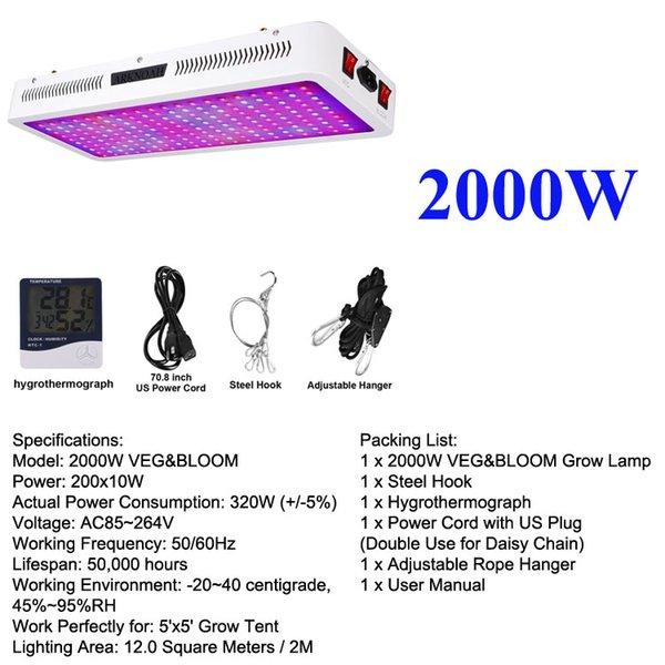 2000W 2 Channel cresce a luz