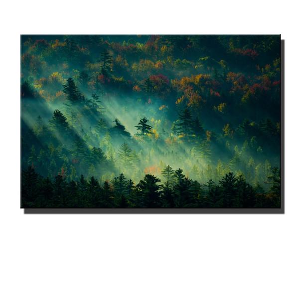 Cenário da floresta, HD Canvas Impressão New Home Decoração Art Painting / (Sem Moldura / Emoldurado)