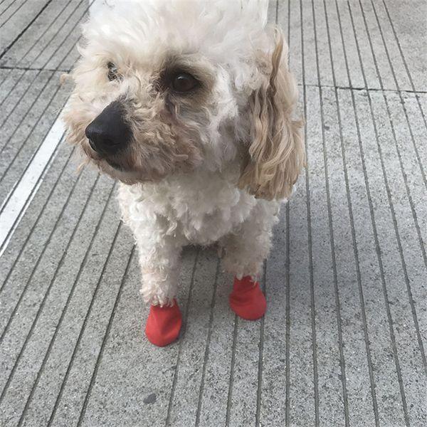 Botas para animais de estimação Meias Médio Dog shoes Sapatos De Chuva À Prova D 'Água Não-slip de Borracha Filhote de Cachorro Sapatos para Animais de Estimação Do Cão Suprimentos