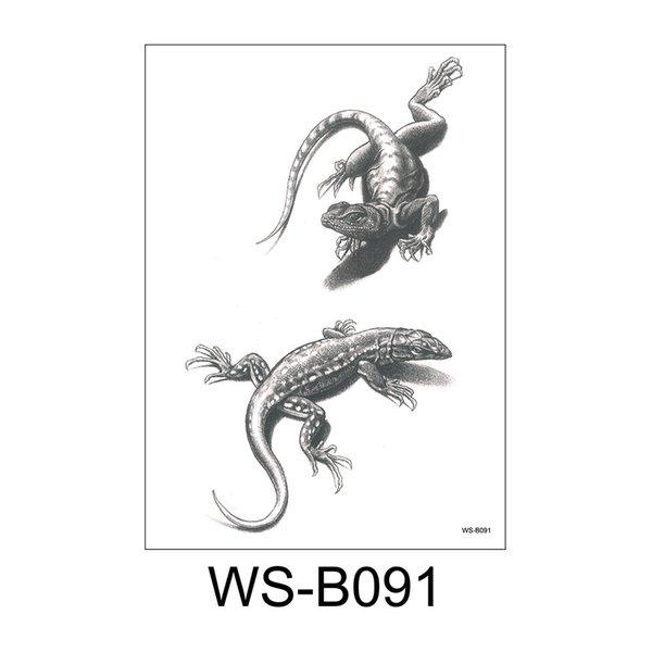 WS-B091