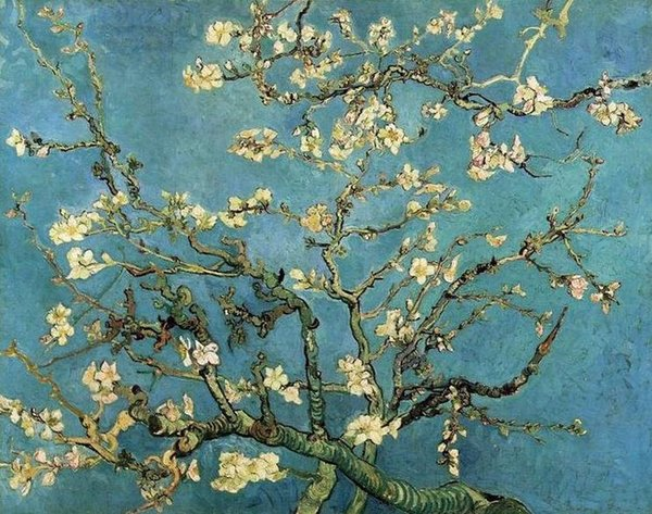 100% Hand-painted Home Decoration Oil Painting Canvas Art Picture by Van Gogh Blossoming Almond Tree Famous Painting Replica