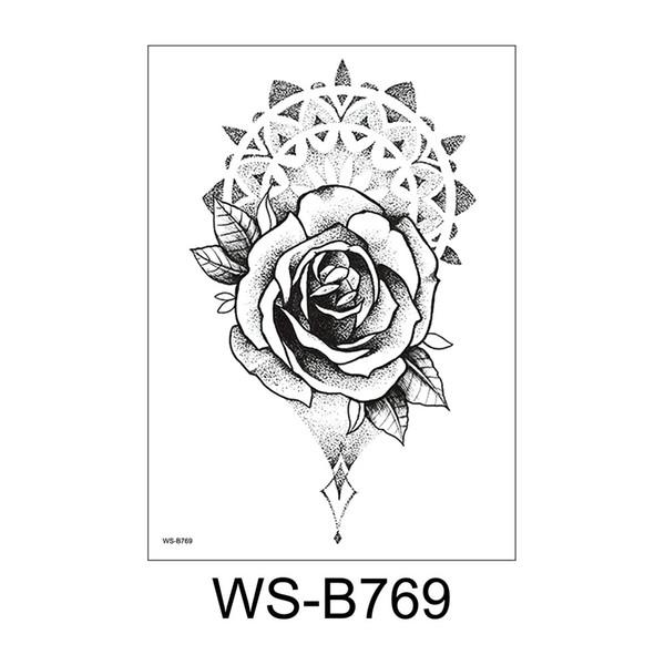 WS-B769
