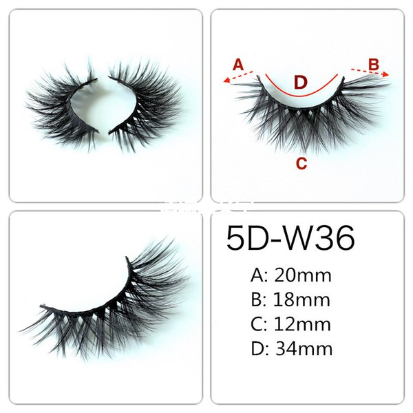 5D-W36