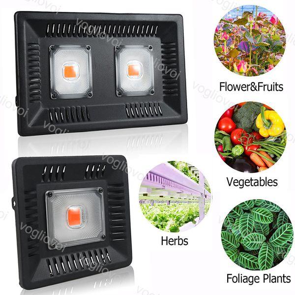 Volle geführte Spektrum 100W 50W wachsen helles wasserdichtes IP67-PFEILER wachsen LED-Lampe für die im Freien Wasserkulturgewächshausbeleuchtung DHL