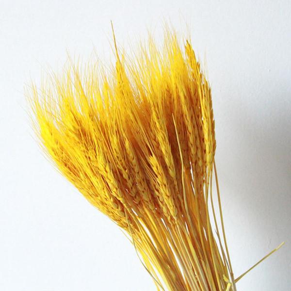 50 adet Buket Yapay Buğday Kulaklar Kuru Çiçekler Ev Dekorasyon Parti Şubesi Düğün Craft DIY Defteri Centerpieces Tahıl