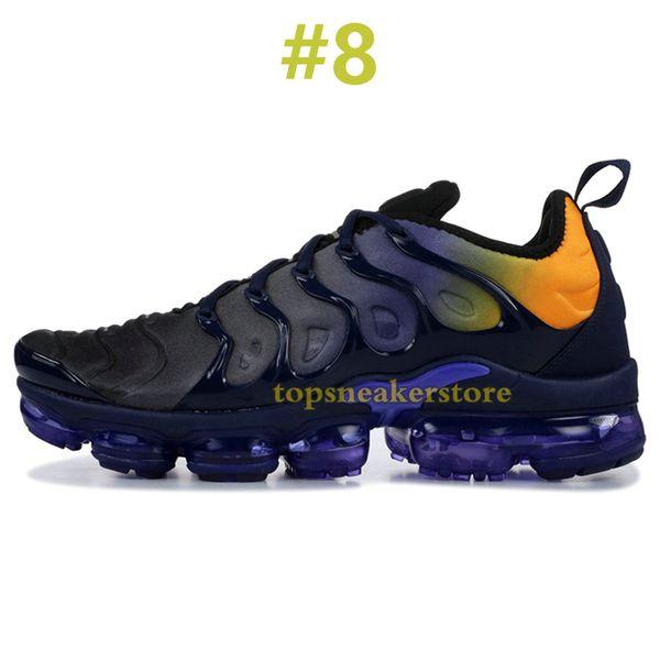 #8 Persian Violet