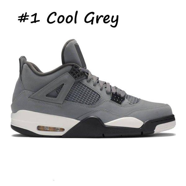 1 Cool Grey