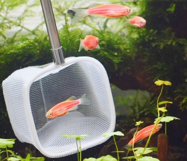 Retractable 3D Aquarium Fish Tank Net Stainless steel rod Fishing Net Round or SquarePocket Shrimp Catching Net 18-53CM
