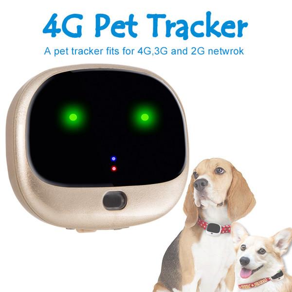 RF-V43 + 4GLTE 3GWCDMA + 2G GSM Mini Pet Tracker GPS Wifi doble valla de Waterpoof IP67 4G perseguidor del animal doméstico seguimiento en tiempo real de localización