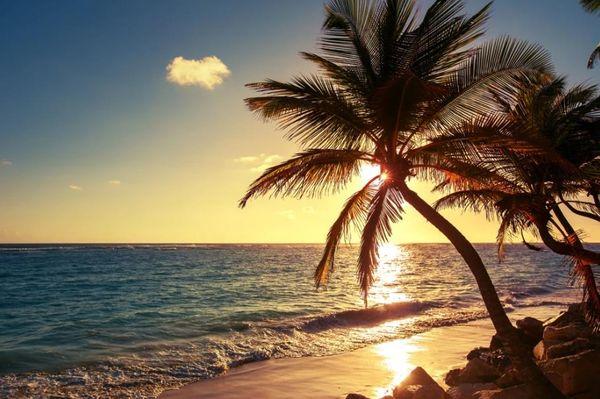 carta da parati moderna per soggiorno Parete di sfondo spiaggia paesaggio albero spiaggia sull'isola