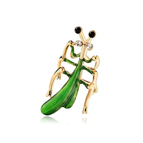 насекомых