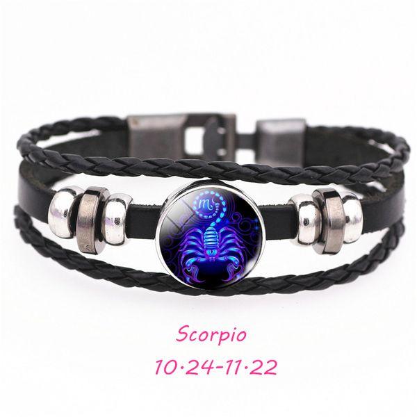 SCSL201-Scorpion 21cm
