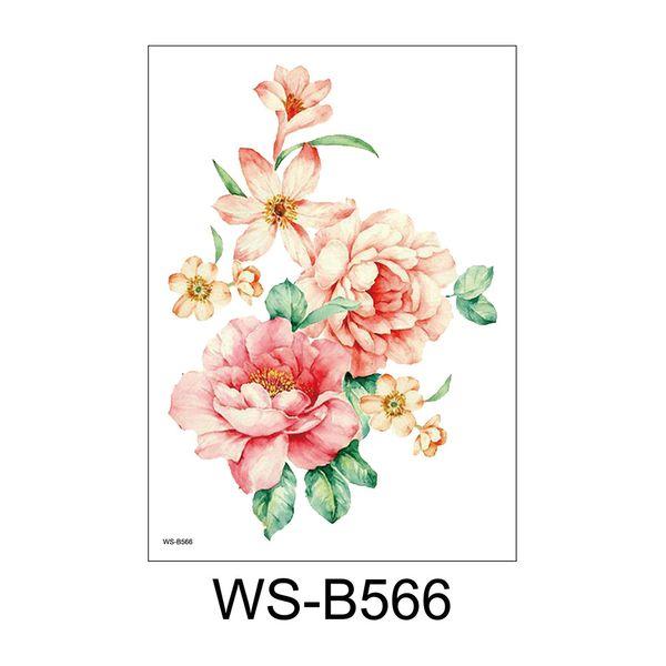 WS-B566