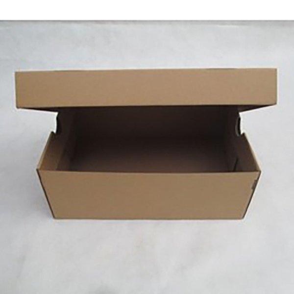 1 caixa de sapato