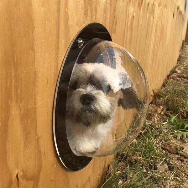 2019 Nuevo Acrílico Pet Dog Fence Window Cats Perros Burbuja Peek Bubble Durable Dome Window