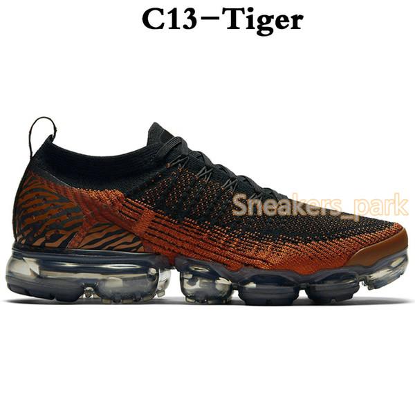 C13-Tiger