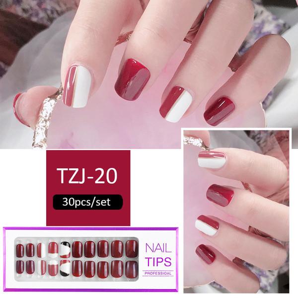 TZJ-20
