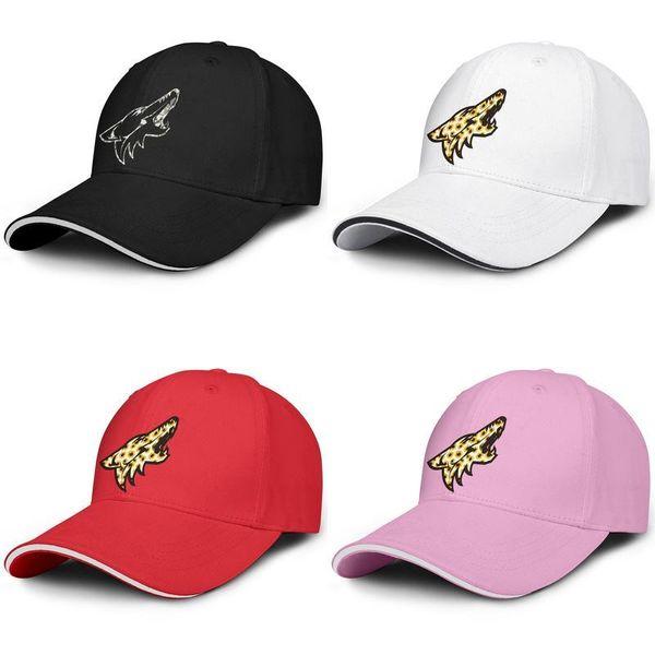 2019 Avrupa-Amerikan Tarzı Basit LOGO Kamuflaj Arizona Coyotes logo Beyzbol Şapkası Baskı Örgü Ayarlanabilir Ayarlanabilir Kep ...