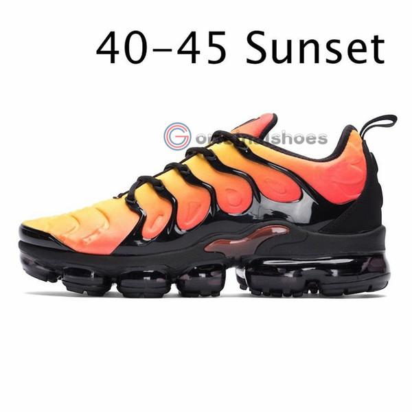 Sunset 5-