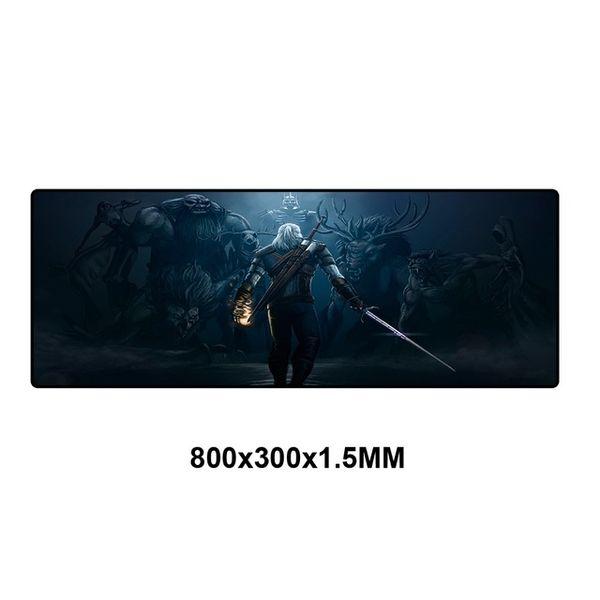 WS-004-80x30