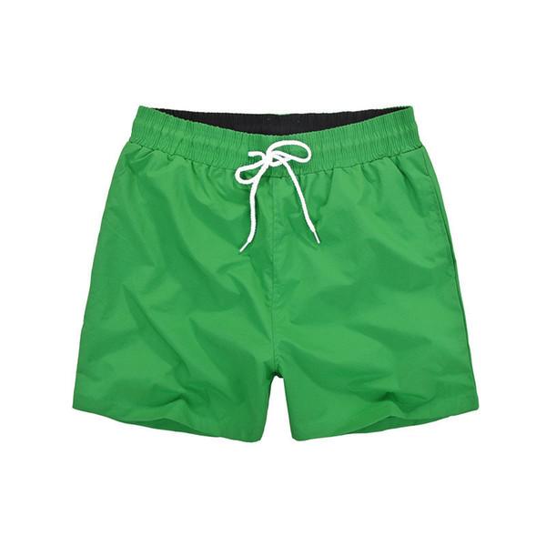 로고 어두운 녹색