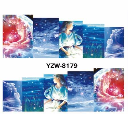 YZW8179