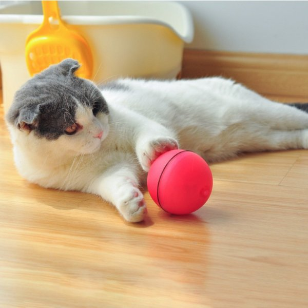 pet cat dog ball molars chew toy laser ball with light training