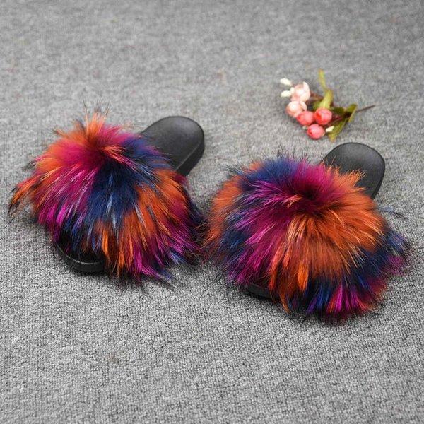 Raccoon Multicolor 1