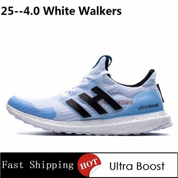 4.0 Caminantes Blancos