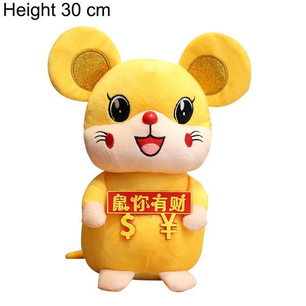 30cm4